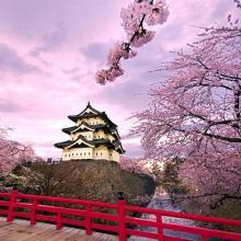 Giảm giá cho tour Nhật Bản 5 ngày