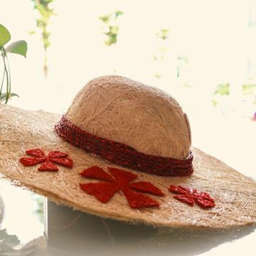 Chiếc nón bằng xơ dừa chinh phục Business ideas 2017