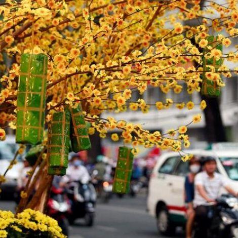 Vé máy bay tết đi Sài Gòn giá rẻ tại Skytour
