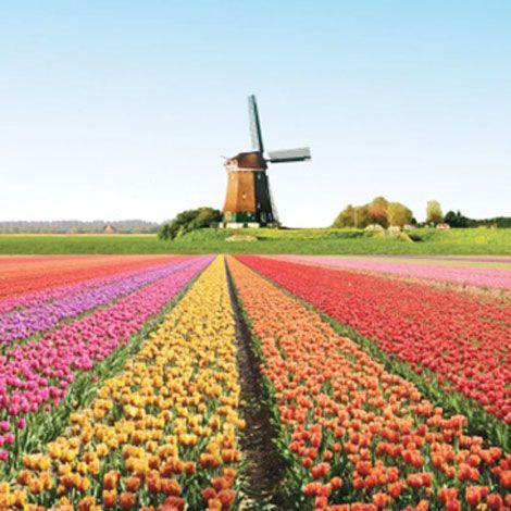 Tour du lịch Pháp - Bỉ - Hà Lan