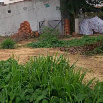 Đất thổ cư phường Linh Trung Thủ Đức