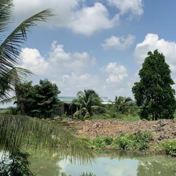 Cần sang đất mặt tiền kênh T1 ở huyện Thủ Thừa, Long An