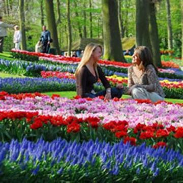 Tour Thụy Sĩ, Đức, Hà Lan, lễ hội hoa Keukonhof 2016