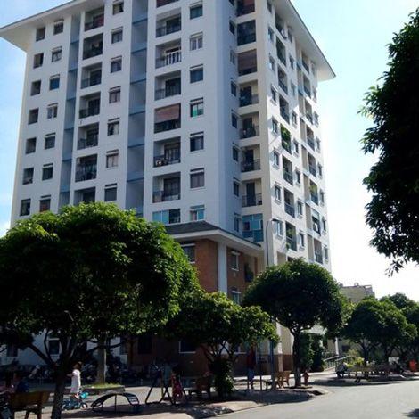Cho thuê nhà chung cư Lạc Long Quân - Quận 11