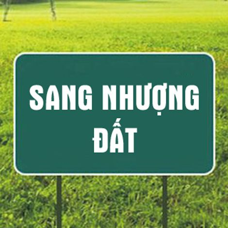 Cần sang 2.600m2 đất mặt tiền Phạm Đình Hổ, Q.6