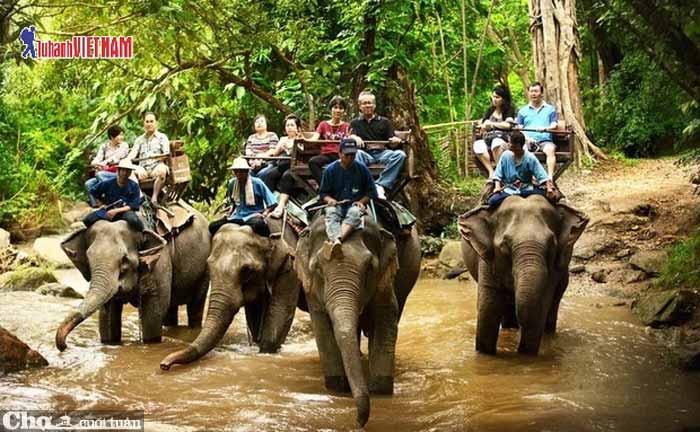 Vi vu Chiang Mai 4 ngày giá chỉ từ 4,9 triệu đồng